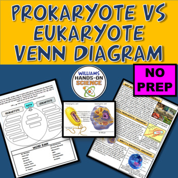 Prokaryotic Cell Vs Eukaryotic Cell Venn Diagram Close Reading Tpt