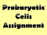 Prokaryotic Cells Assignment