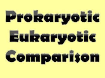 Prokaryotic Eukaryotic Comparison