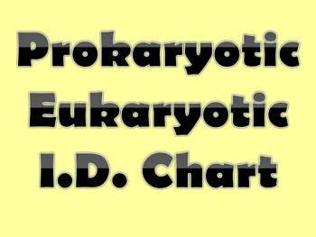 Prokaryotic Eukaryotic ID Chart