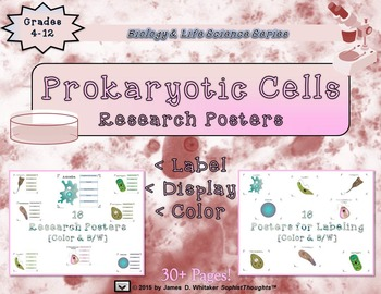 Prokaryotic Unicellular Organisms Researh & Labeling Posters