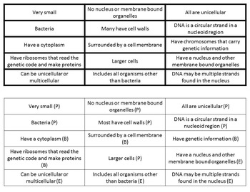 Compare and Contrast Prokaryotic and Eukaryotic Cells Bundle
