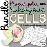 Prokaryotic VS Eukaryotic Cells Bundle of Activities and Assessments