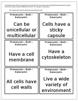 Prokaryotic and Eukaryotic Cells - Comparison Activity (4B)