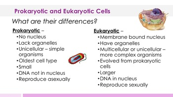 Prokaryotic and Eukaryotic Cells Complete 5E Lesson Plan