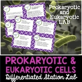 Prokaryotic and Eukaryotic Cells Student-Led Station Lab