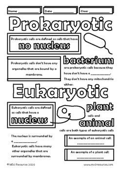 Prokaryotic and Eukaryotic Cells Doodle Notes, Middle and High School Biology