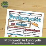 Prokaryotic and Eukaryotic Cells Notes Middle and High School Biology