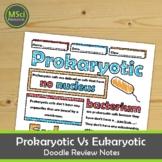 Prokaryotic Eukaryotic Cells Visual Guided Notes Test Prep