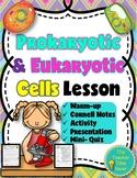 Prokaryotic and Eukaryotic Cells Lesson (presentation, notes, & activity)