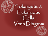 Prokaryotic and Eukaryotic Cells Venn Diagram