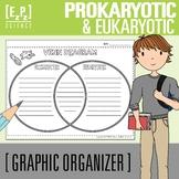 Prokaryotic and Eukaryotic Cells Venn Diagram Graphic Organizer