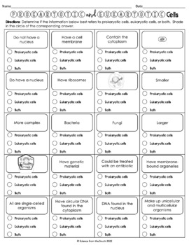 Digicollect: Eukaryotic Cell Structure Worksheet Answers
