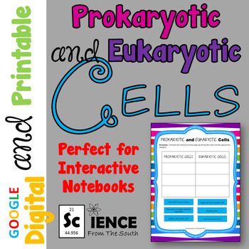 Prokaryotic and Eukaryotic Cells for Digital Interactive Notebooks and More
