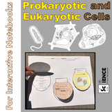Prokaryotic and Eukaryotic Cells for Interactive Notebooks and More