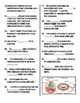 Prokaryotic and Eukaryotic Cells (student fill-in-the-blan
