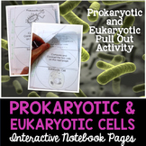 Prokaryotic and Eukaryotic Cells Interactive Notebook Pages