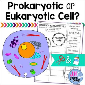 Prokaryotic And Eukaryotic Cells Worksheet Teaching Resources