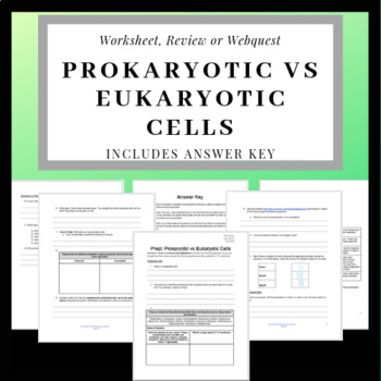 eukaryotes vs prokaryotes