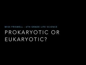 Prokaryotic vs Eukaryotic Cells Pack