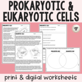 Prokaryotic vs. Eukaryotic Guided Reading - Print & Google