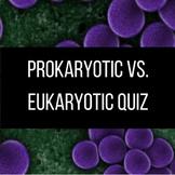 Prokaryotic vs. Eukaryotic Quiz