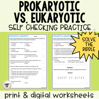 Prokaryotic vs. Eukaryotic Self Checking Practice