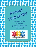 Prompt Hierarchy - Printable Visual and Information Page!