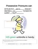 Pronoun Adjectives