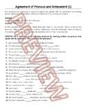 Pronoun Antecedent Agreement | Reviews | Grammar Worksheets | HS ELA | Gr 9-10