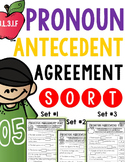 Pronoun Antecedent Agreement Sort