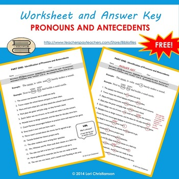 pronoun antecedent identification worksheet by bibliofiles tpt. Black Bedroom Furniture Sets. Home Design Ideas