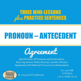 Pronoun-Antecedent Agreement:  PowerPoint with Three Minilessons