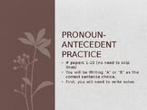 Pronoun-Antecedent Agreement Practice