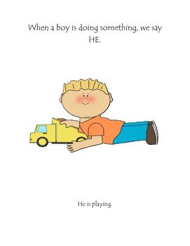Pronoun Book