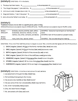 Pronoun Lesson - Identification & Usage - notes, application, test - worksheets
