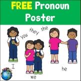Pronoun Poster