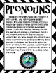 Pronoun Posters FREEBIE