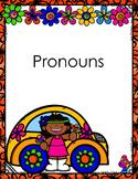 Pronoun Worksheets and Activites