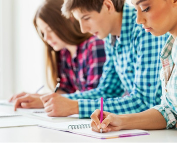 phd dissertation writing service in india