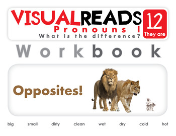 Pronouns I. 12 They are (opposites). Reading Book+Workbook+Flashcards