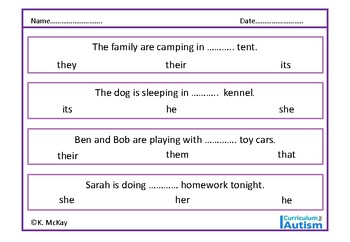 Pronouns Grammar Worksheets Autism Special Education ESL