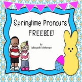 Pronouns- Spring Freebie!
