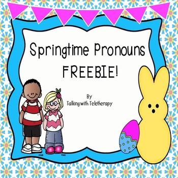 Pronouns- Spring Freebie!