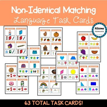 Matching Non Identical Pictures Task Cards (sped/autism)