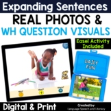 No Print Summer Pronouns, Verbs, Simple Sentences & Wh Questions 3