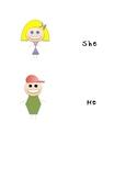 Pronouns Visual Prompt