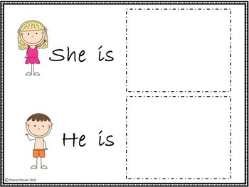 He and she Pronoun Activities for Speech Therapy with a  Beach Theme
