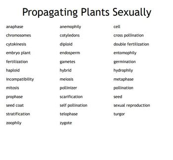Propagating Plants Sexually Bingo for an Agriculture II Plant Science Course