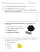 Properties of Light Lab Sheet